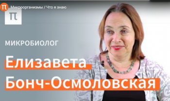 Микроорганизмы: интервью с Е.А. Бонч-Осмоловской