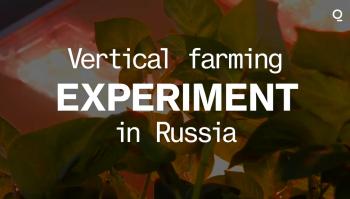 Russia's Vertical Farm Experiment